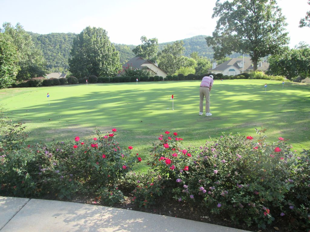 Enjoy a round  of golf at The Pointe. Discounts available during certain hours.