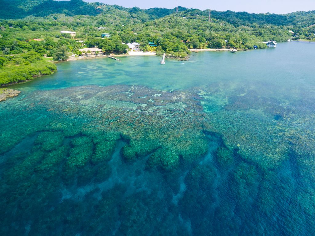 Snorkeling just feet from your private beach.