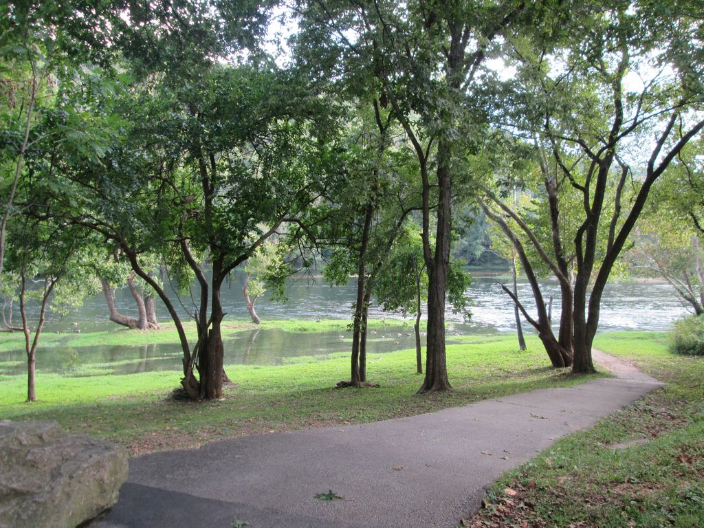 Walk from the lakeside park to Lake Taneycomo. About .25 mi from your condo