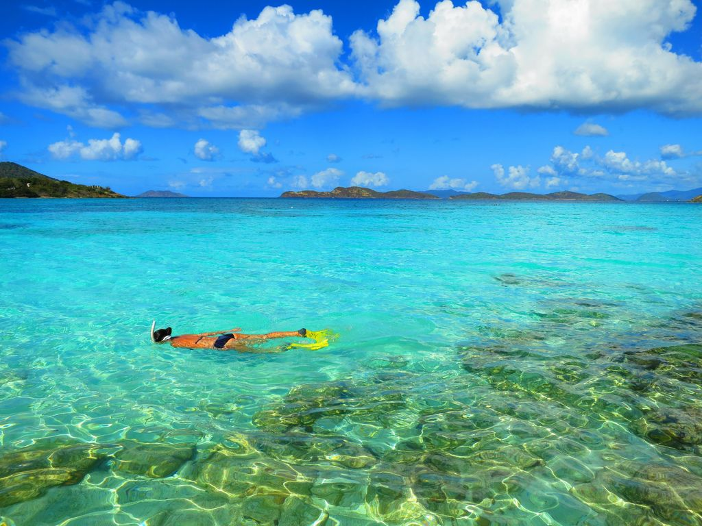 Snorkeling st Sapphire Beach - the best beach on St. Thomas