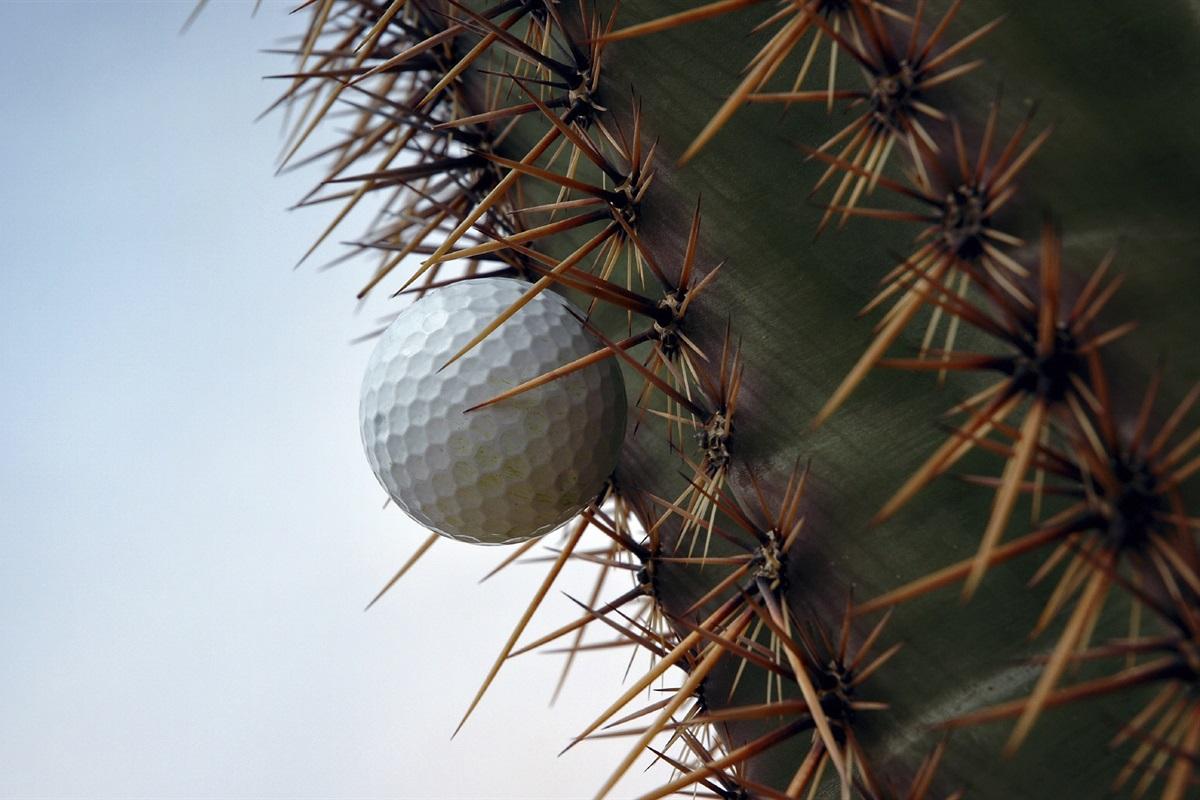The ultimate golfing destination.