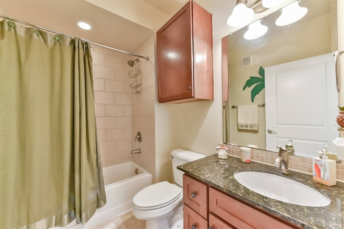 Guest Bathroom with Combination Tub/Shower
