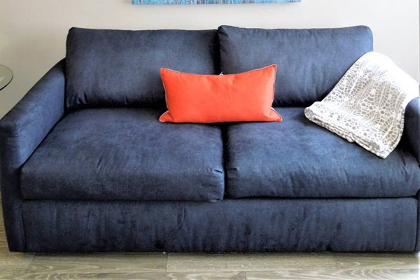 Pull out full sized sofa