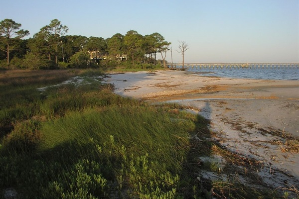 Bayside beach is great too for exploring, cast netting, fishing