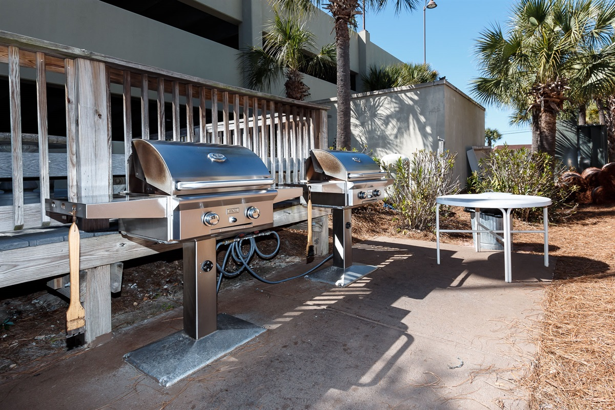 Professional Gas Grill Area!