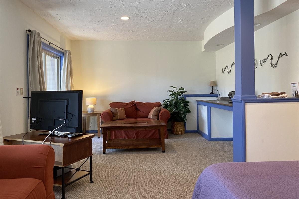 Basement - TV Room