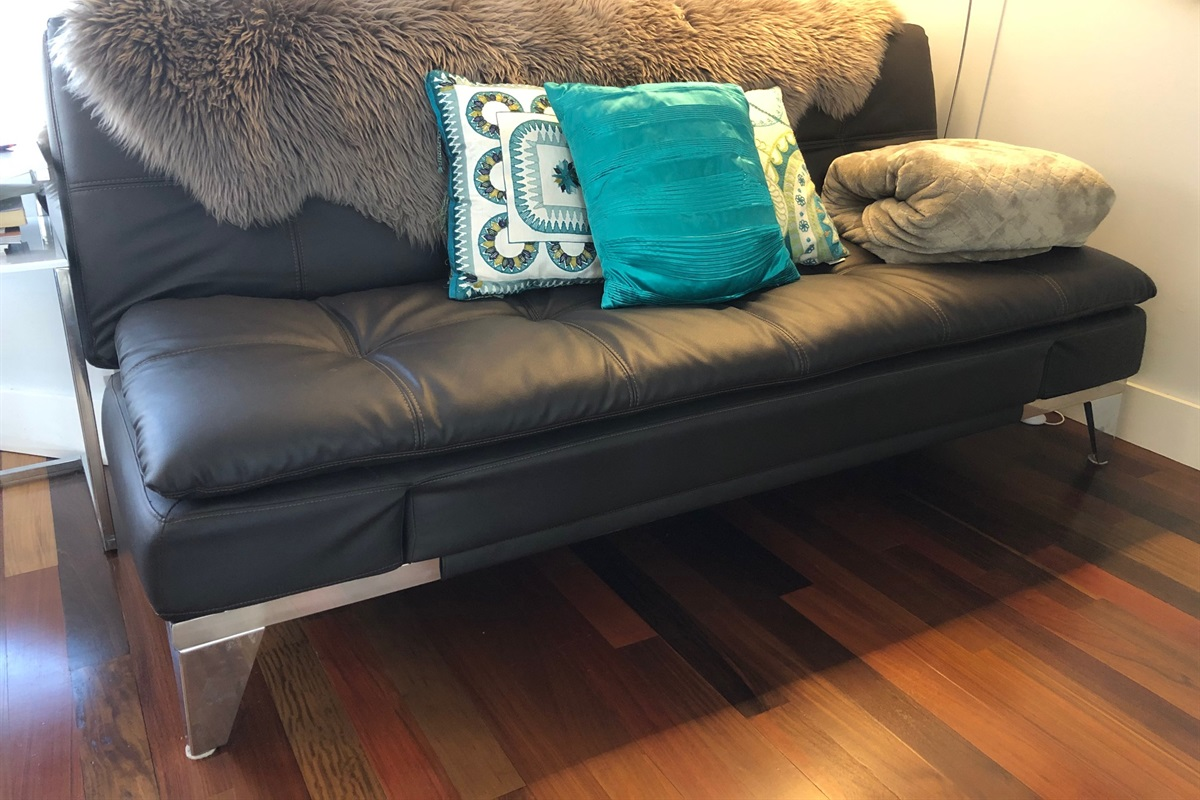 Euro-Sleeper Couch (folds down flat)