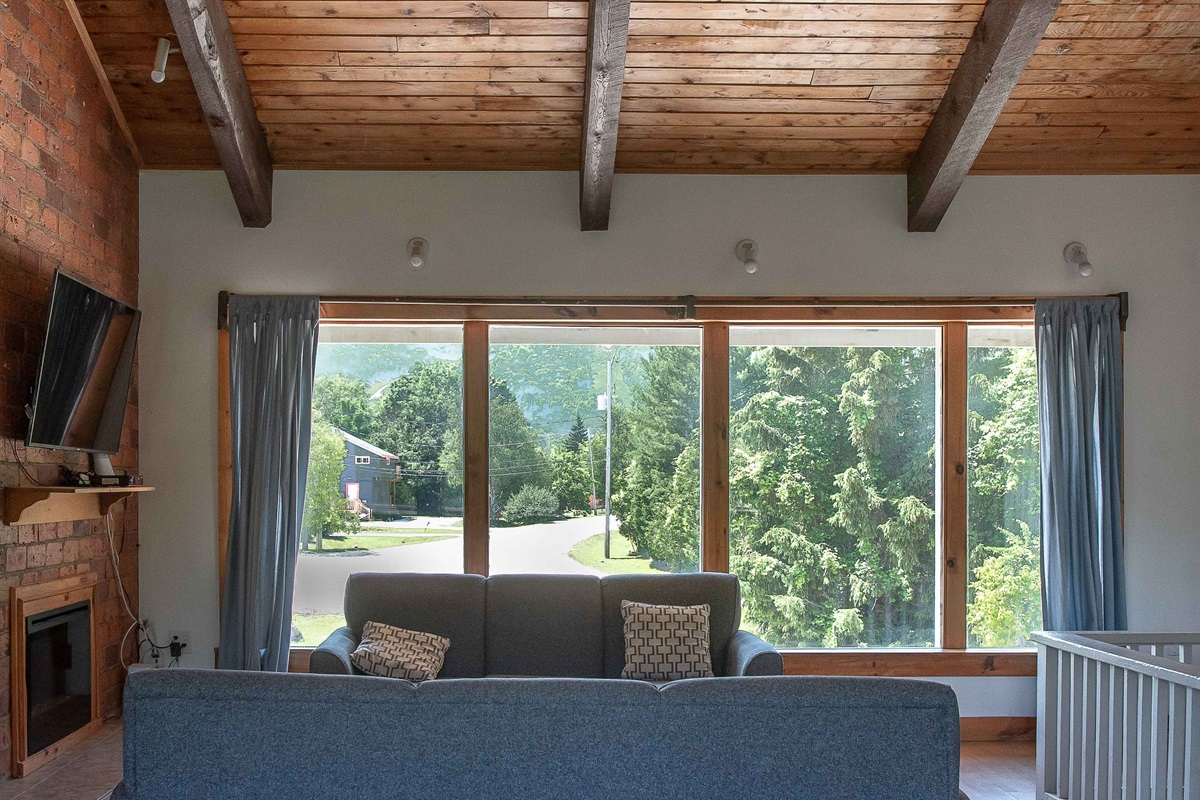 """""""Bear"""" - Living room with a view of Blue Mountain"""