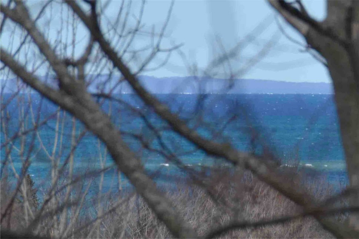Deck view of Christian Island in Georgian Bay (looking out through the forest in the Spring)