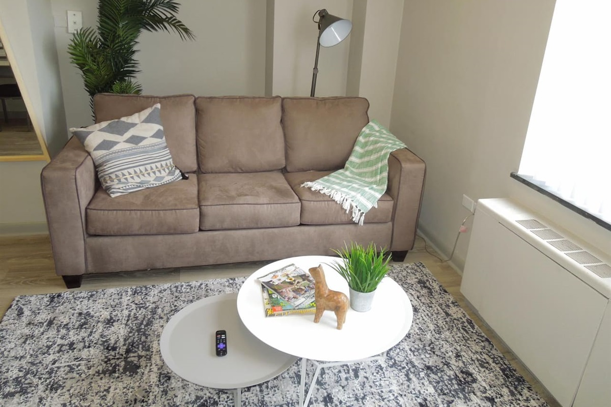 Sleeper sofa will full size pullout