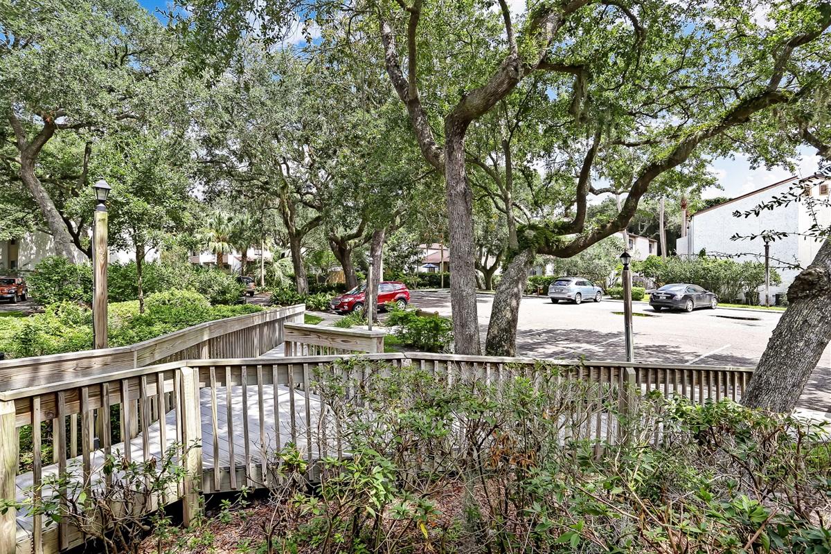 Oak Tree Lined Community