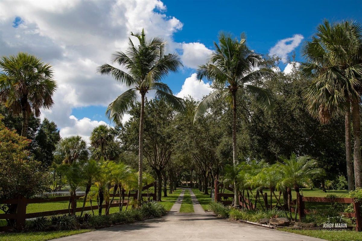 Drive through the gates of this incredible 4 acre Hacienda