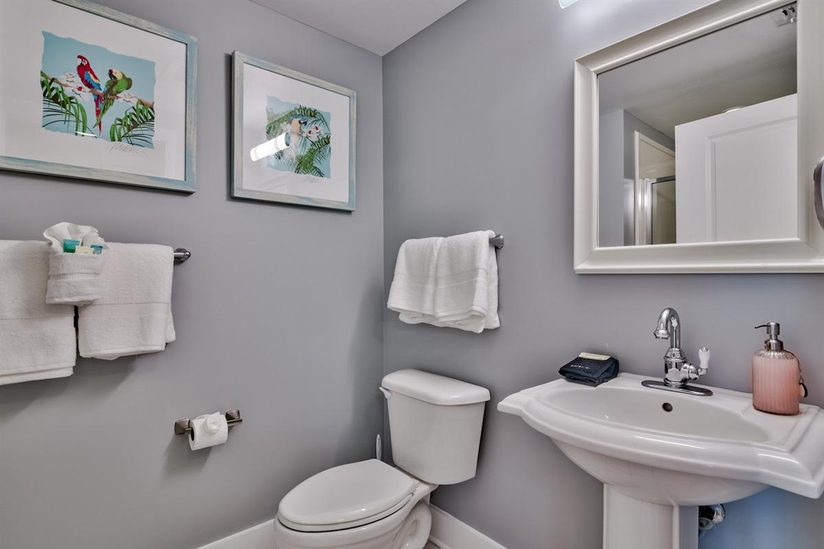 Guest Bahtroom