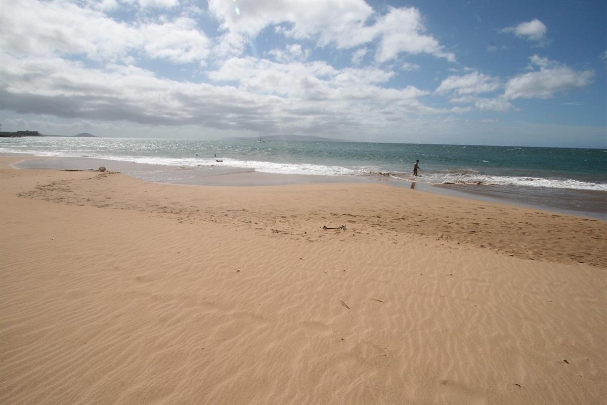 The nearby beach