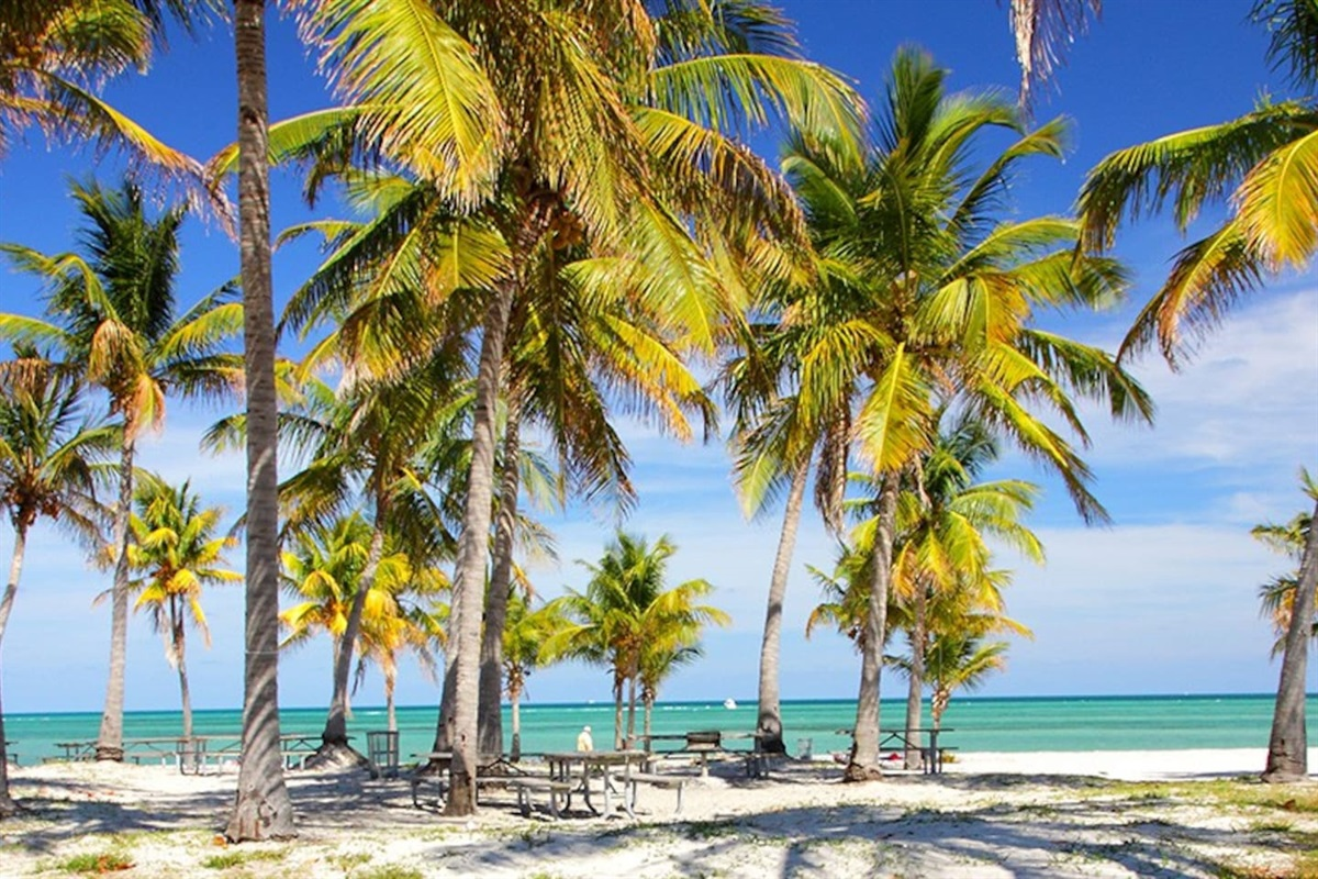 Lush Palms and picnic areas.  We love to give local suggestions and provide a detailed Guide to South Florida with the check in information.