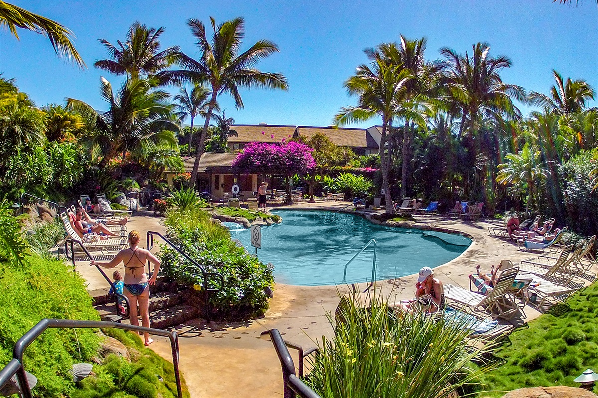 One minute from the Tropical Oasis pool, one of the nicest on Maui