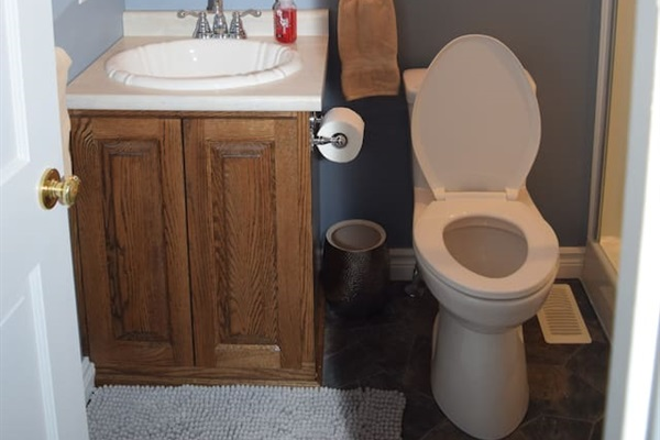 Bathroom #2, located off the living room