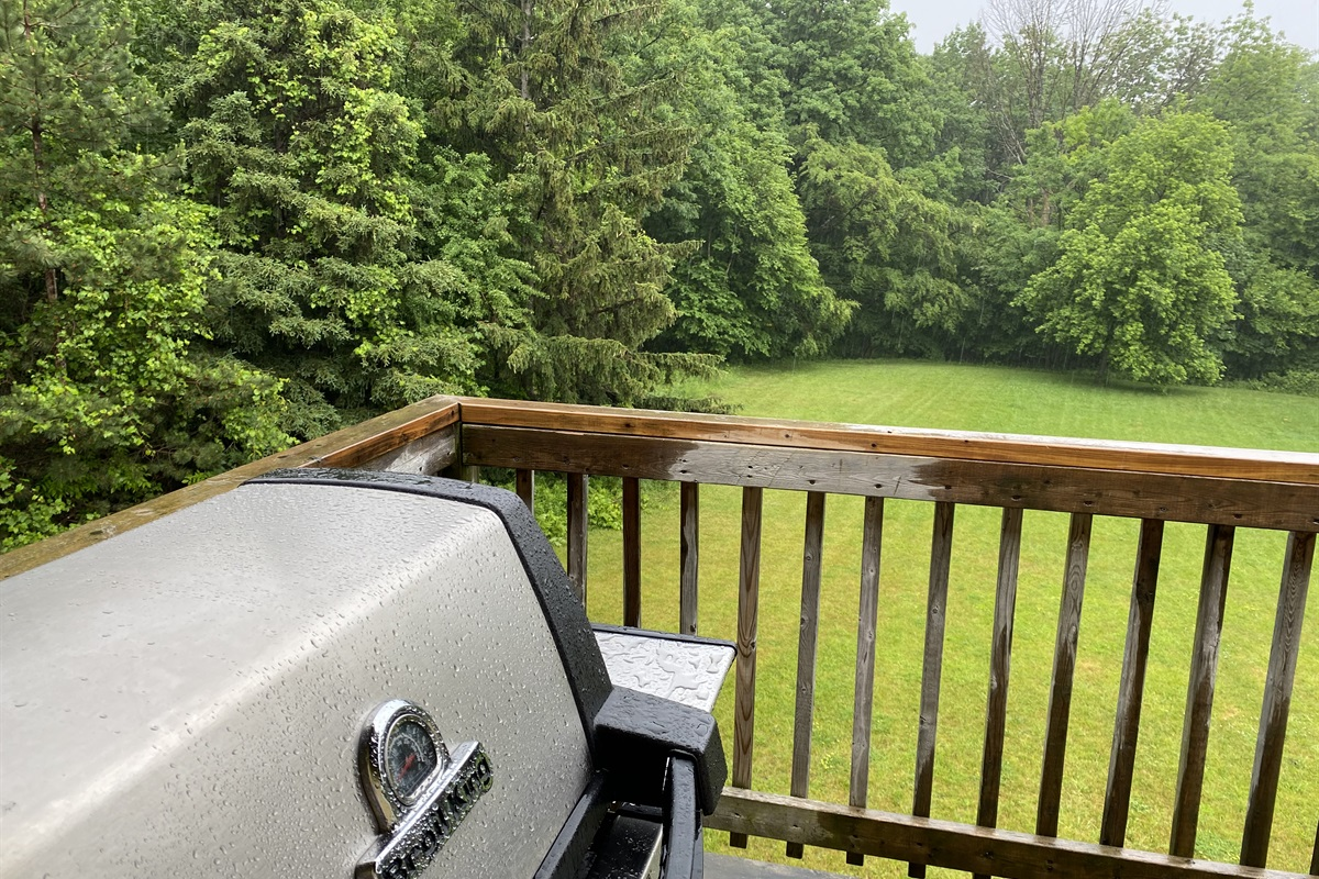 Broil King gas BBQ on the balcony overlooking the backyard and forest