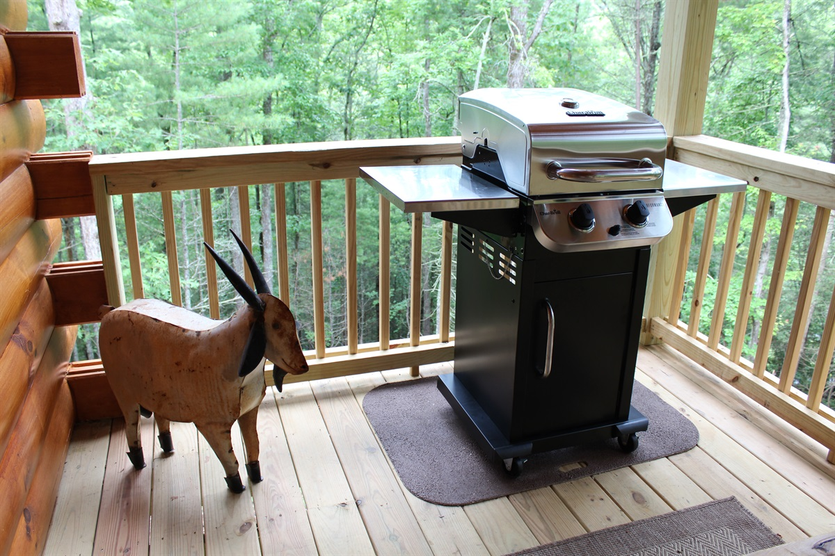 Gas grill for the perfect steak