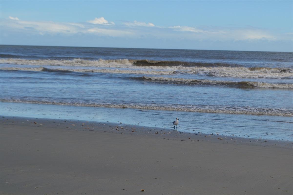 The beach awaits your arrival!