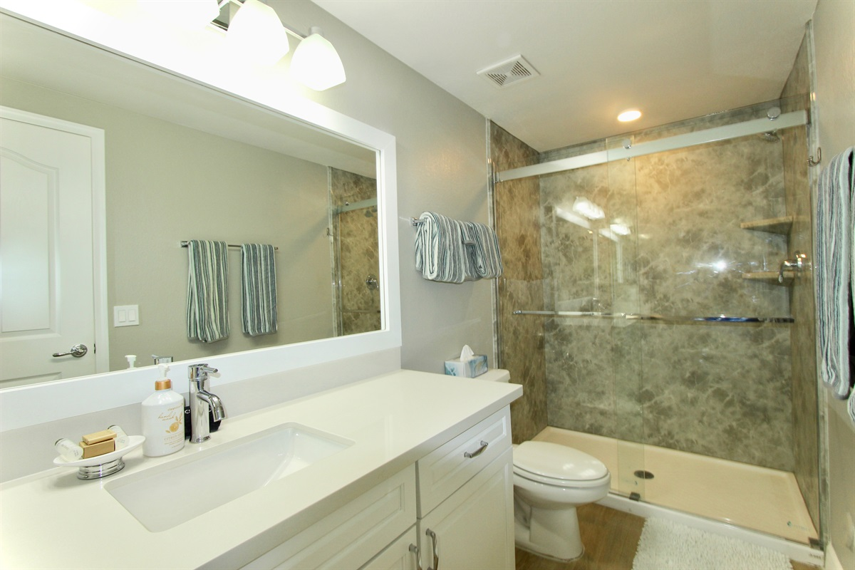 Master bathroom with walk in shower.