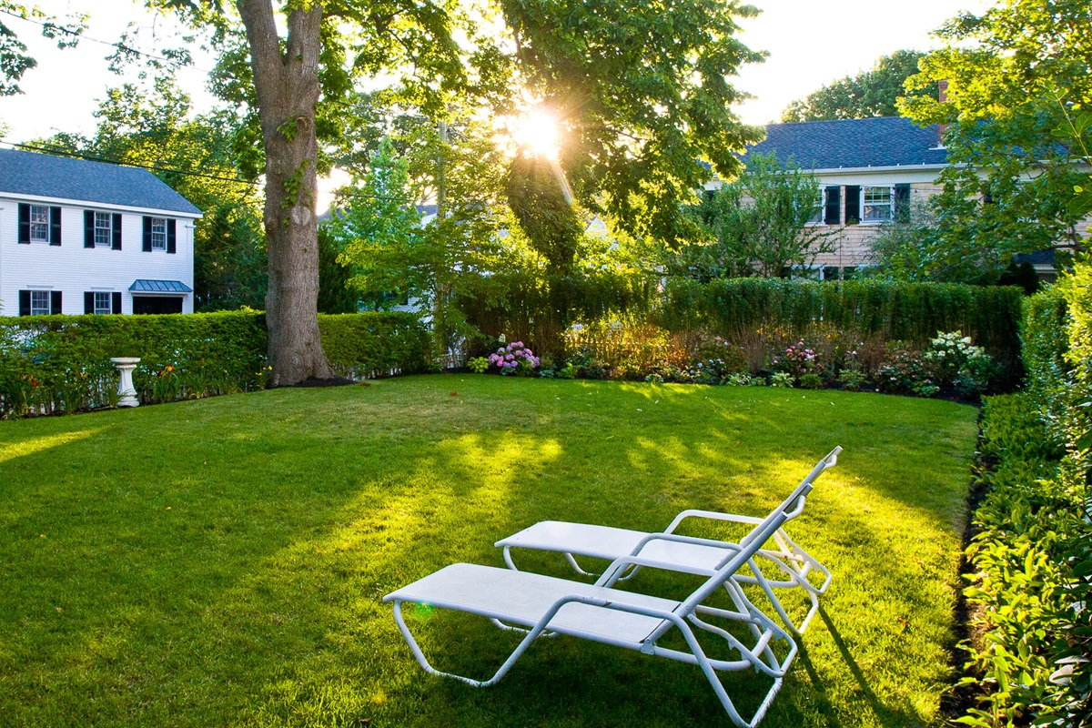 Back Lawn and Chaise Lounges (5)