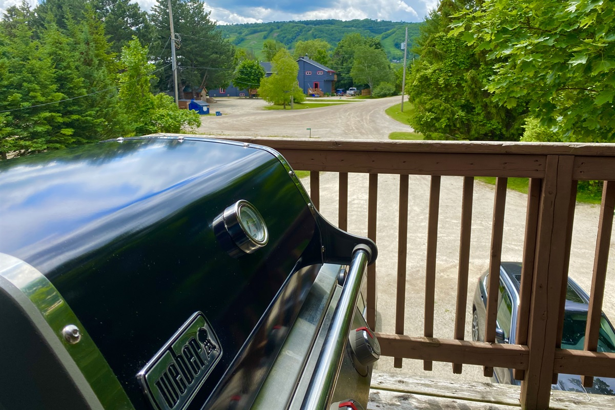 """""""Moose"""" - Weber gas BBQ with the view of Blue Mountain"""