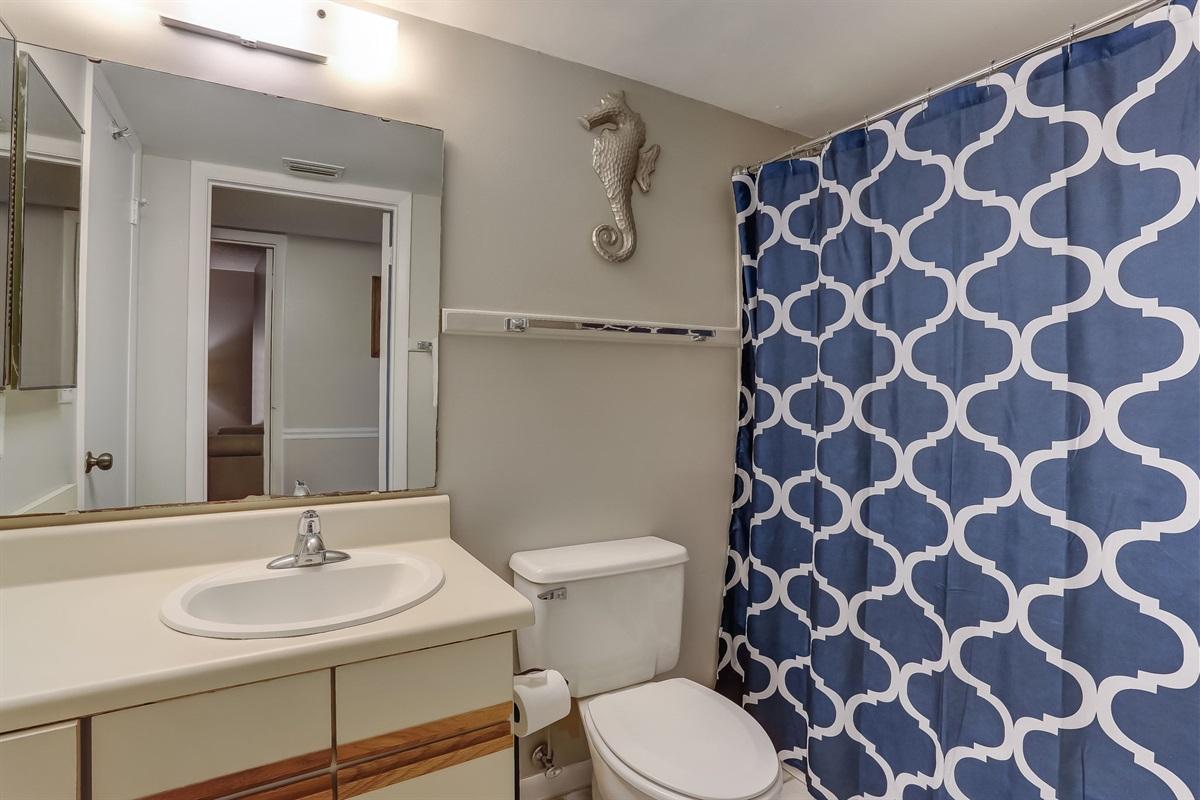 Hall Full Bathroom