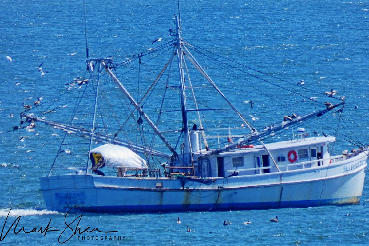 Relax on the balcony and watch the shrimp boats pass by!