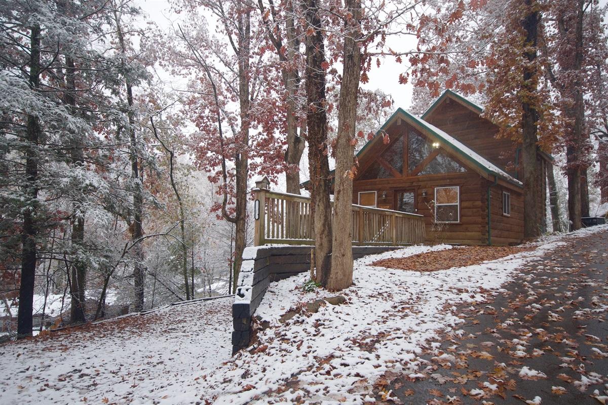 View of cabin from Oak Ridge Rd