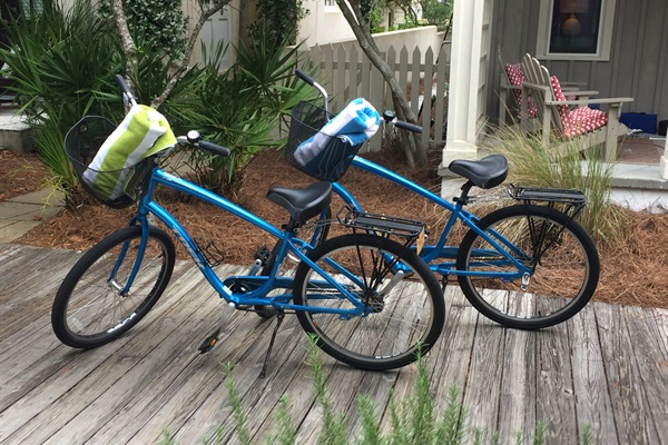 Two Adult Trek Bikes