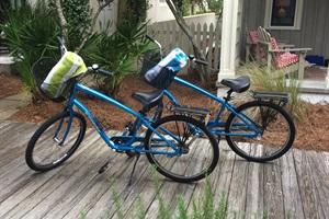 Two Adult Trek Bikes