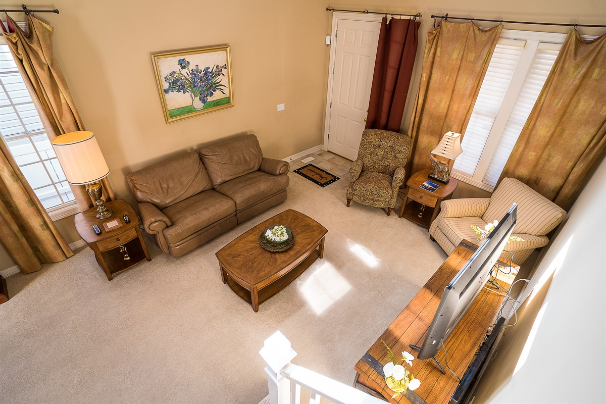 Downstairs Living Room Area