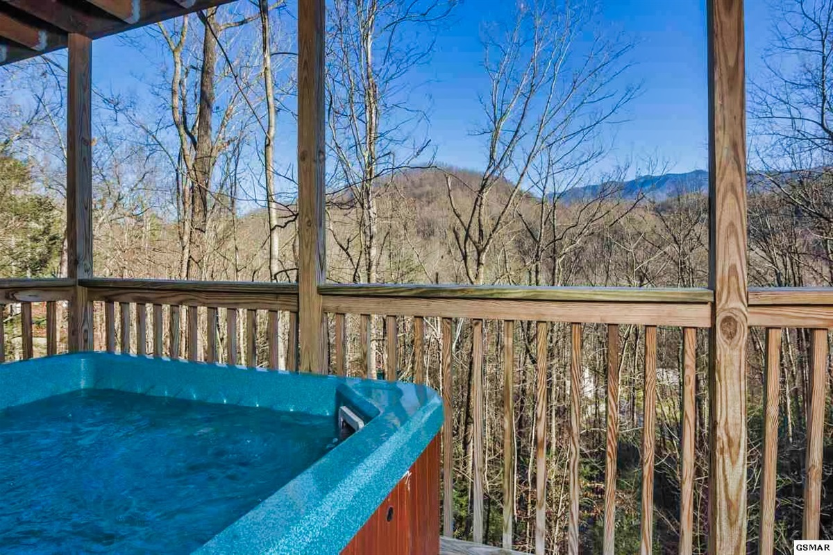 Hot Tub View - Winter